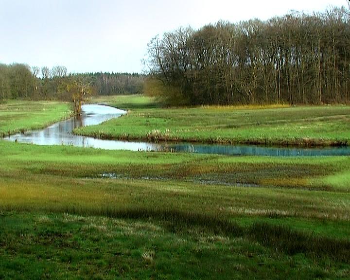Het water van de Drentsche Aa op haar best: meanderend door het landschap