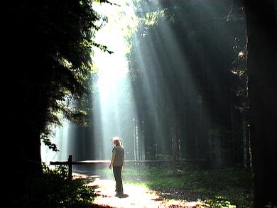 Prachtig najaarsnatuurlicht in het National Park Drentsche Aa