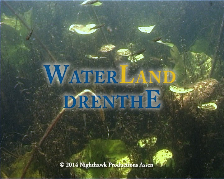 Water Land Drenthe: Drenthe zoals jet nog nooit zag...