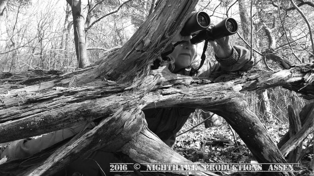 Het observeren van de boommarter is een uiterst geduldig zaakje...en daarmee is het zuinig gezegd...