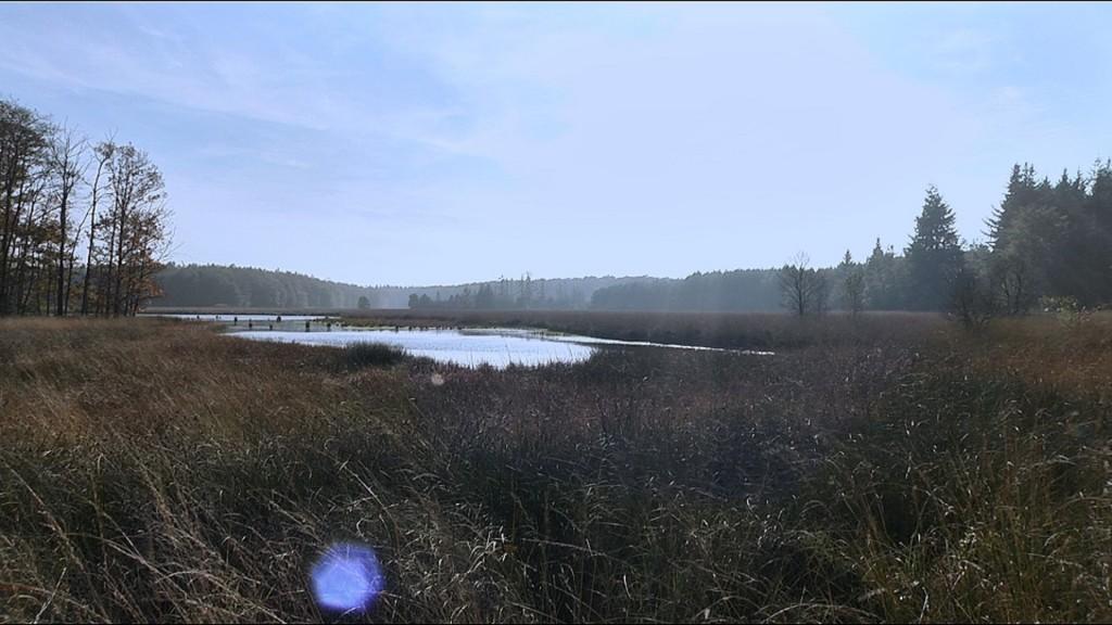 De Drentse natuur: onweerstaanbaar mooi. Ook in de TV commercial...