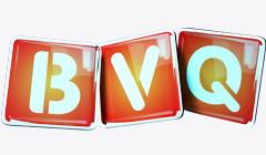 BVQ 3
